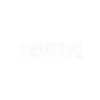 Dusoul